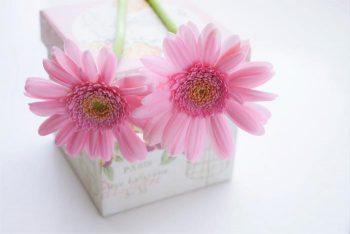 片思いのバレンタインチョコの選び方5つ!予算や形は何がベスト?