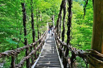吊り橋効果とは?不安的な場所のドキドキを恋と錯覚!?