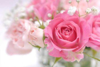 薔薇の香りで恋愛運アップ